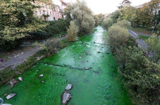 Fluss ist giftgrün gefärbt