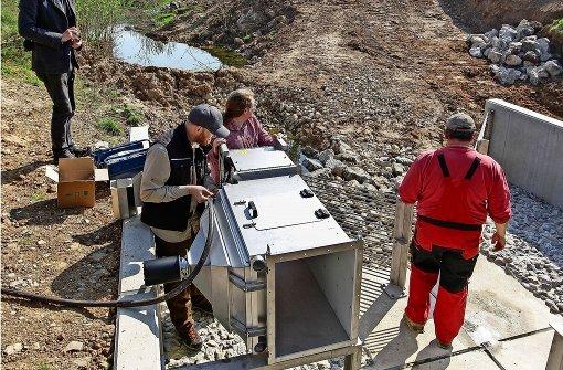 Computer zählt die  Fische im Neckar