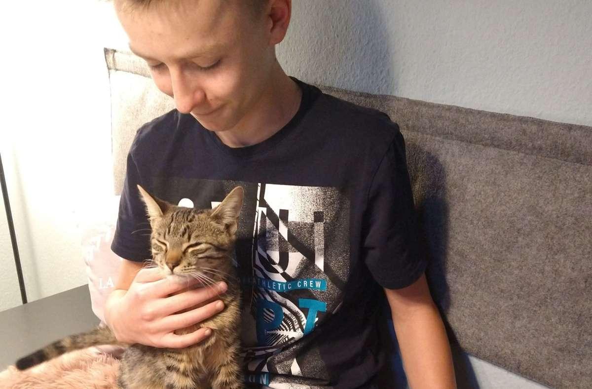 Schon richtig gute Freunde: Jamie (13) mit einer von seinen Katzen. Foto: privat