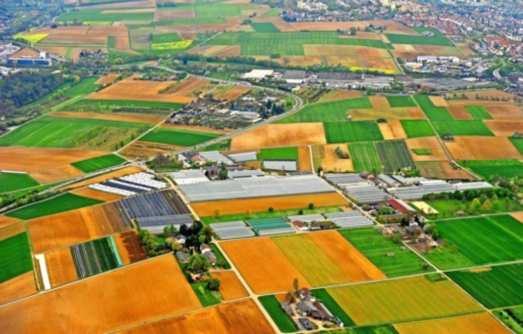 Viel Platz, aber wenig politischer Spielraum? Das Gewerbegebiet Laiern (obere Bildmitte) liefert Zündstoff für Gemeinderatsdebatten. Foto: Werner Kuhnle