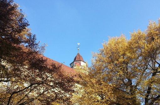 So schön ist der Herbst in Leonberg
