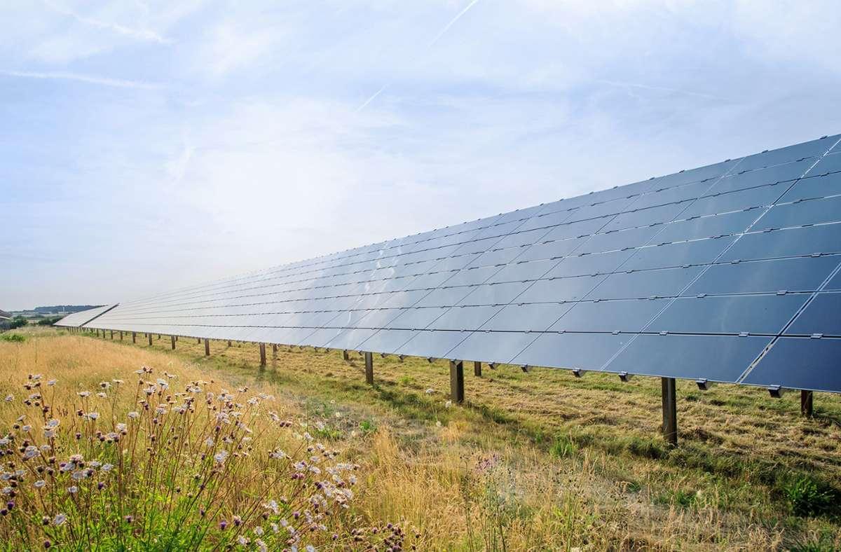 Bosch will den Anteil regenerativer Energien am Verbrauch deutlich steigern. Die drei neuen Langzeitverträge für Photovoltaik-Strom tragen dazu bei. Foto: Bosch