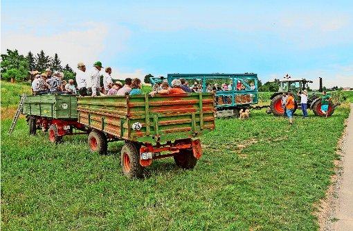 Viele  reden den Landwirten ins Tagwerk  hinein