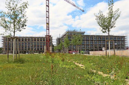 Volksbank zieht 2019 in den Neckarpark