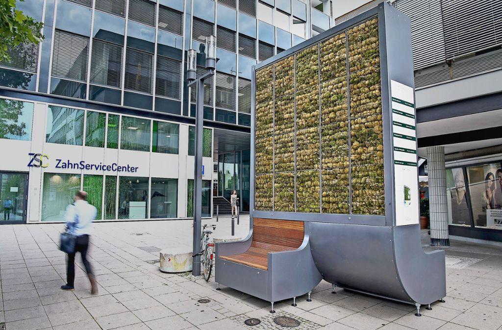 Sitzen mit Mooswand im Rücken: Die Stadt sieht die City Trees als Teil der grünen Infrastruktur, Kritiker halten die Investition für pure Geldverschwendung. Foto: dpa