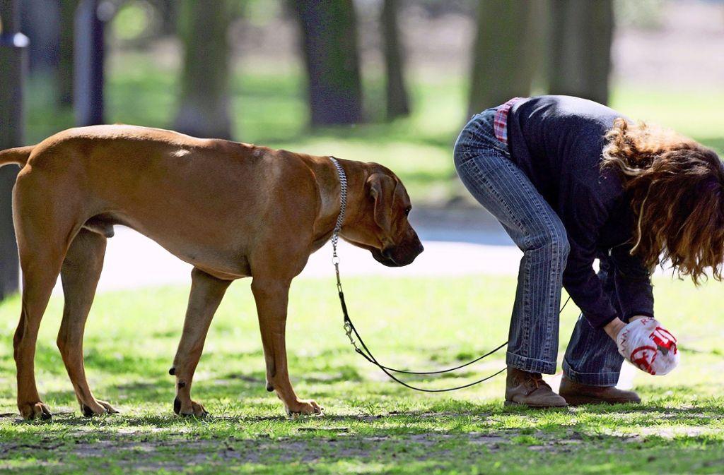 Wenn Hundebesitzer öfter die Hinterlassenschaften ihrer Vierbeiner beseitigen würden, wären Forderungen wie die nach einer DNA-Datenbank für Hunde vermutlich  hinfällig. Foto: dpa