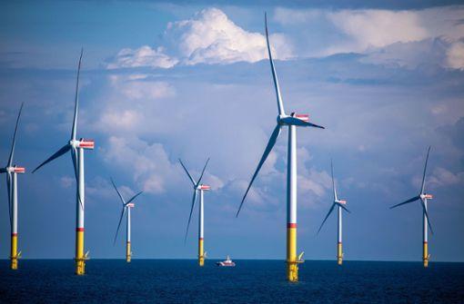 Firmen scheuen Aufwand für grüne Finanzierungen