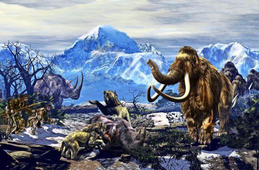 Soll das Mammut zurückkehren?