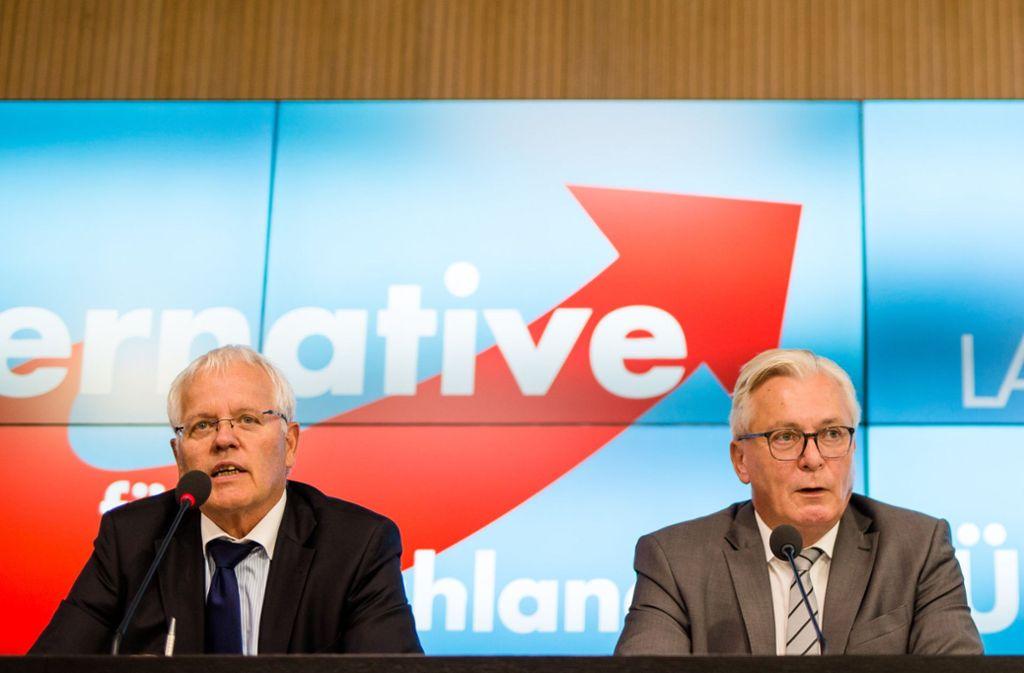 Kämpfen um die Macht in der Landes-AfD: Emil Sänze (l.) und Bernd Gögel Foto: dpa