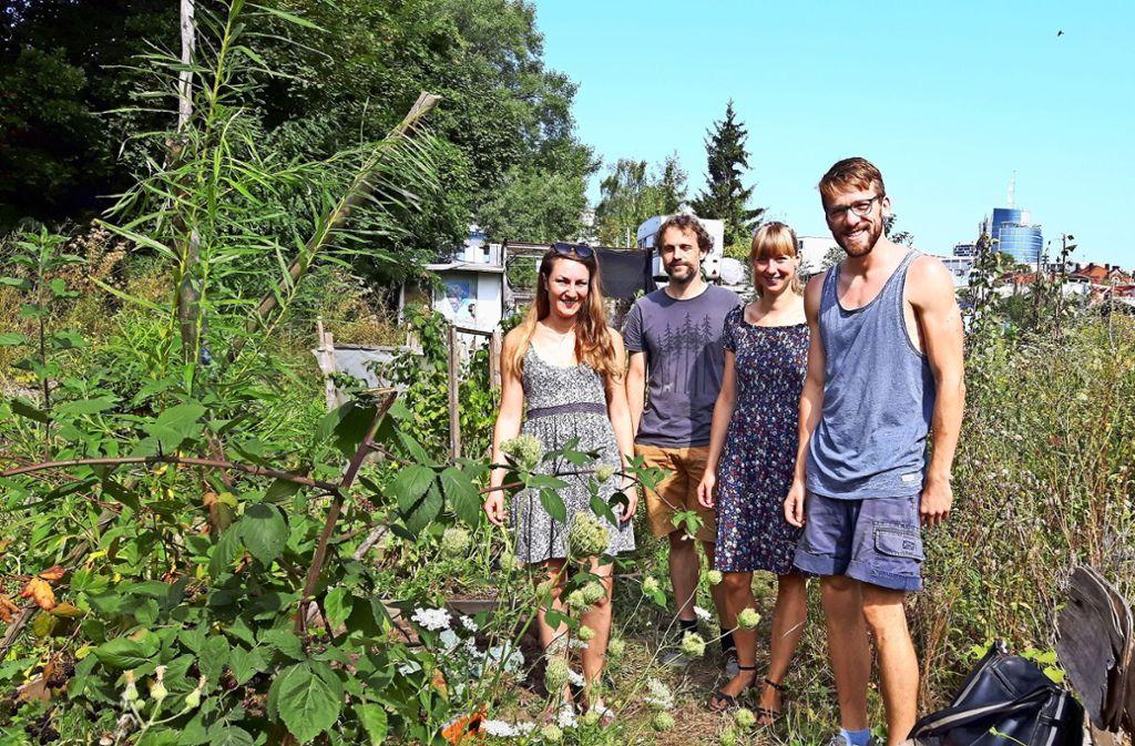 Elisa Bienzle, Martin  Abelmann, Anne Schubert und Christian  Schmid auf ihrem Stadtacker (von links). Foto: Eva Funke