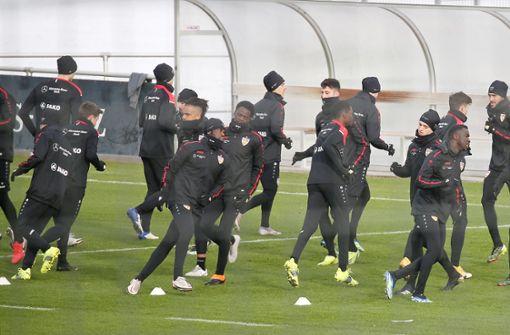 VfB startet in die Trainingswoche