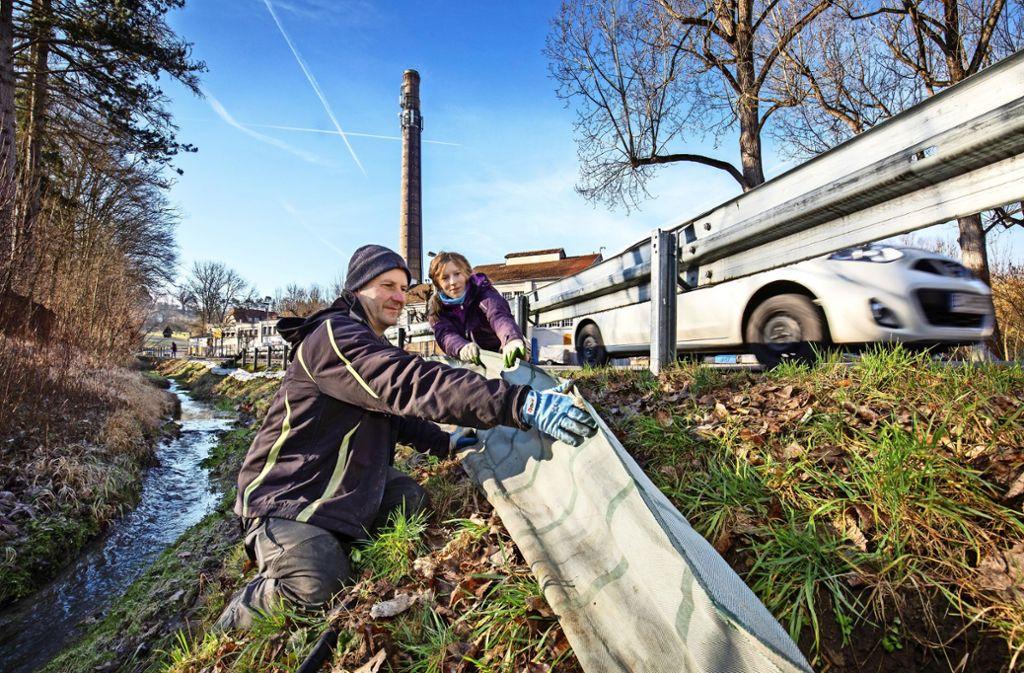 Klaus Nimmrichter vom Nabu und die Helferin Katharina Mayer errichten einen Amphibienschutzzaun. Foto: Michael Steinert