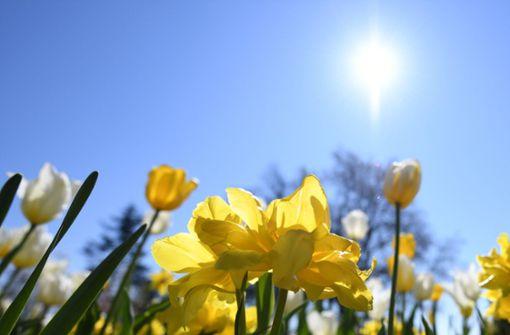 Viel Sonne und milde Temperaturen an Ostern