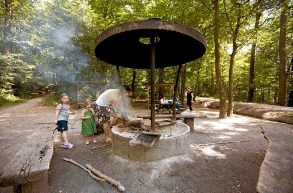 Der Aufstieg zur Grillstelle im Bopserwald lohnt sich. Foto: Michael Steinert