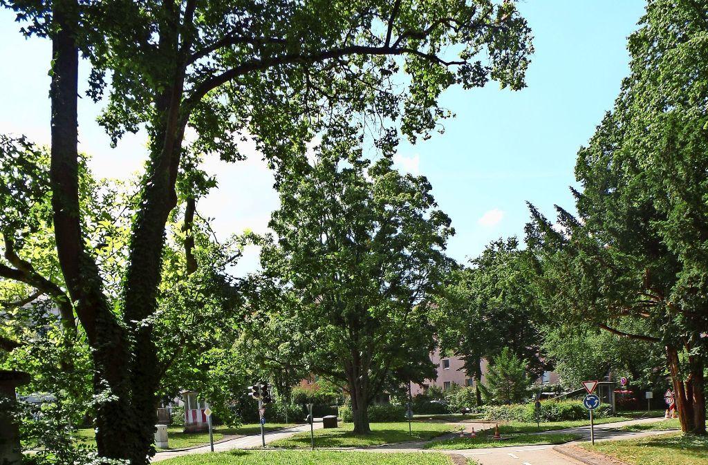 Statt Verkehrsschule: der Diakonissenplatz ein soll ein grüner Park werden. Foto: Archiv/   Wesely