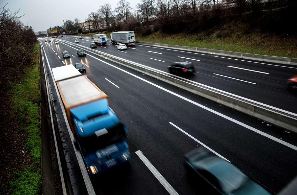Schnellstraßen sind für Katzen und andere Vierbeiner ein ganz gefährliches Terrain. Foto: Lichtgut/Leif Piechowski
