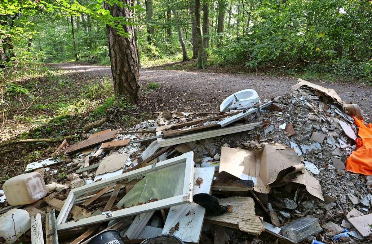 Keramik, Fensterrahmen und jede Menge Schutt wurden auf der Waldebene Ost einfach entsorgt. Foto: Jürgen Brand
