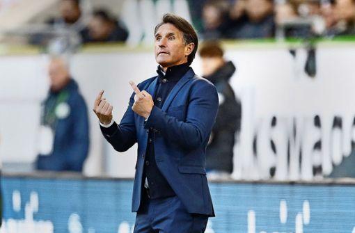 Das erhofft sich Hertha BSC von Bruno Labbadia