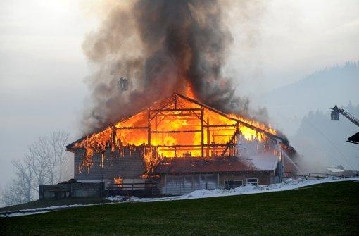 20 Kühe aus brennendem Stall gerettet