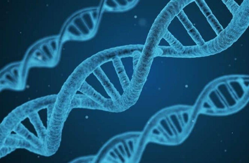 Das preisgekrönte Startup Cegat aus Tübingen hilft den Ärzten bei der Verschreibung von Medikamenten – mit einer schnellen und preiswerten Untersuchung von Genen. Foto: Pixabay/qimono/CC0
