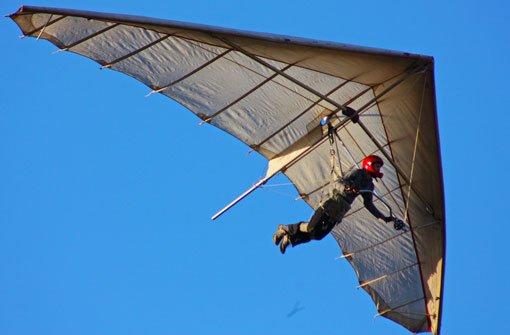 33-Jähriger landet nach Flug in Baumkrone