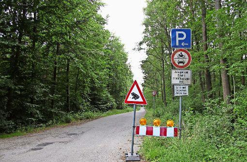 Findlinge sollen Raser  auf Alter Poststraße bremsen