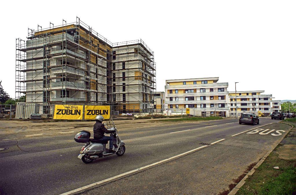 Zurzeit mit 4,3 Hektar das größte Neubaugebiet in Stuttgart: Im Roten Stich in Zuffenhausen entstehen 200 Wohnungen. Foto: Lg/Kovalenko