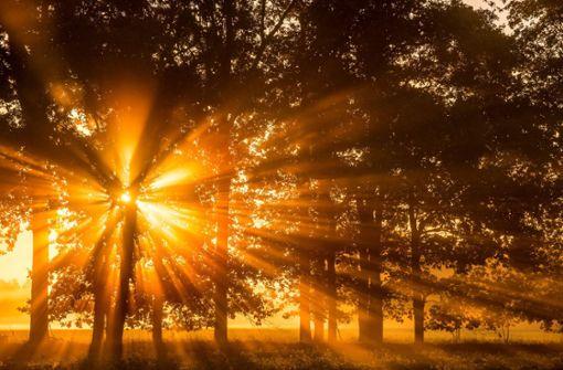 Vorsicht vor blendenden Sonnenstrahlen auf den Straßen