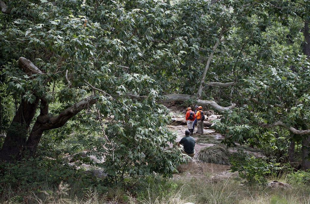 Rettungskräfte suchen im Tonto National Forest bei Payson nach vermissten Schwimmern. Foto: AP