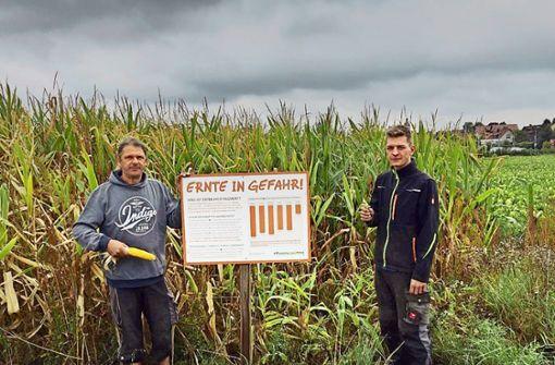 Bauern wehren sich gegen Insektenschützer