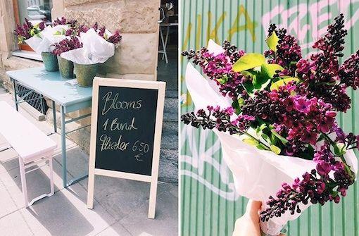 Die schönsten Blumenläden in Stuttgart