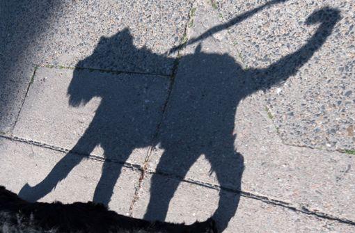Hund beißt Kind auf Schulhof ins Gesicht