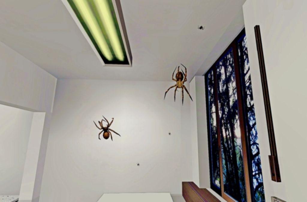 Bilder wie dieses werden den Patienten über eine Datenbrille präsentiert. Die Patienten wissen, dass es nur virtuelle Spinnen sind, doch die Panik ergreift sie trotzdem. Foto: Uni Würzburg