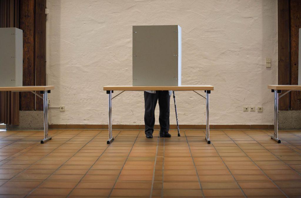 Die Wähler haben dem Rems-Murr-Kreis vier Abgeordnete beschert. Foto: Gottfried Stoppel