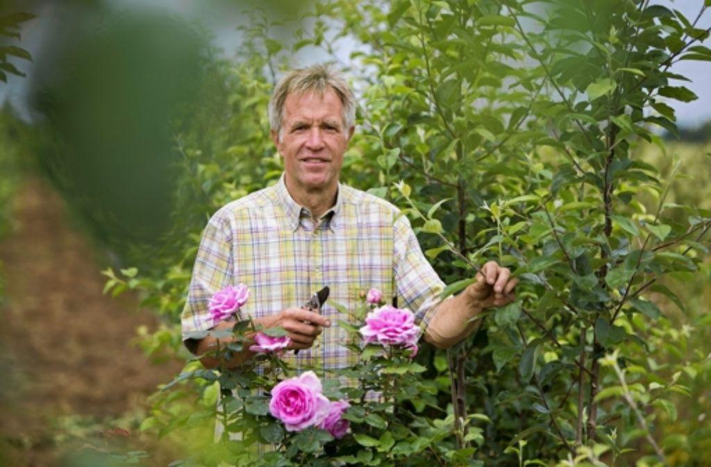 Eberhard Jung ist seit 1996Vorsitzender des Obst- und Gartenbauvereins. Foto: Michael Steinert