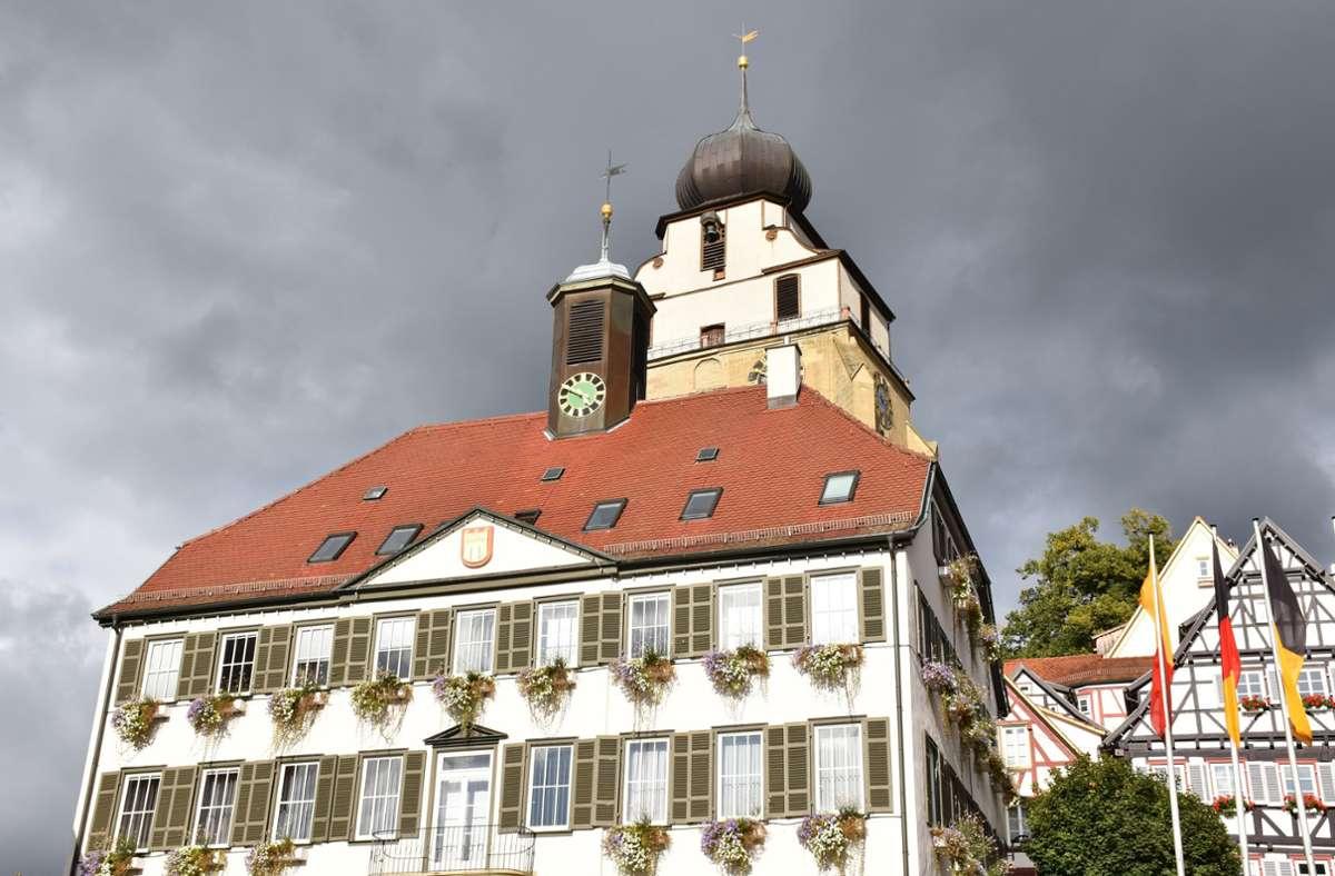 In der Herrenberger Kommunalpolitik gibt es Neuigkeiten: Die Fraktion der Grünen hat sich neu aufgestellt. Foto: KRZ/Schumacher