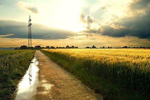 Es herbstelt in Stuttgart und Region. Foto: Leserfotograf chrisho