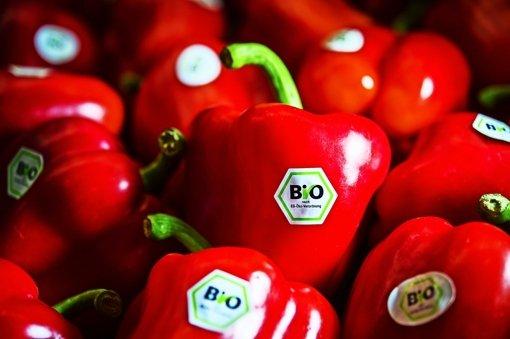 Bio-Anbau wächst stark