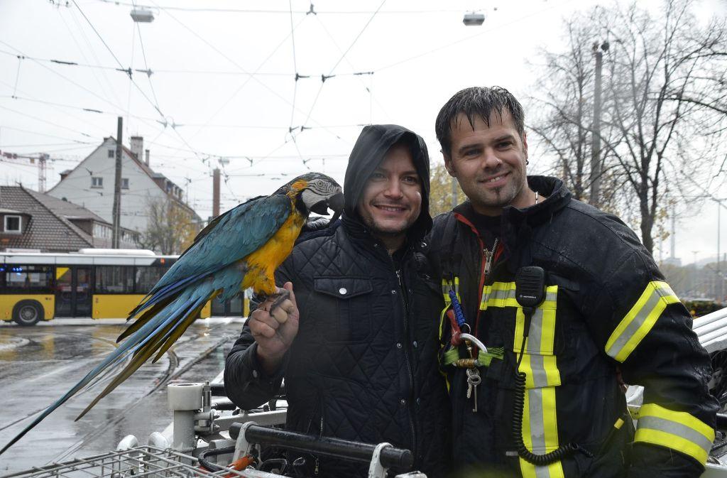 Zufriedene Gesichter nach der Rettung durch die Feuerwehr und seiner Vogeldame Gipsy: Gelbbrust-Papagei Paco ist mit seinem Tiertrainer Alessio Fochesato wieder vereint. Foto: Andreas Rosar Fotoagentur-Stuttgart