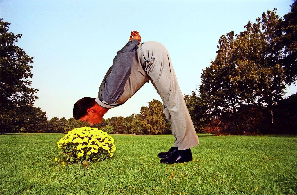 Wer braucht  Wasser, wenn er seine Nase in Blumen stecken kann, von oben zumal, und nicht von unten? Foto: