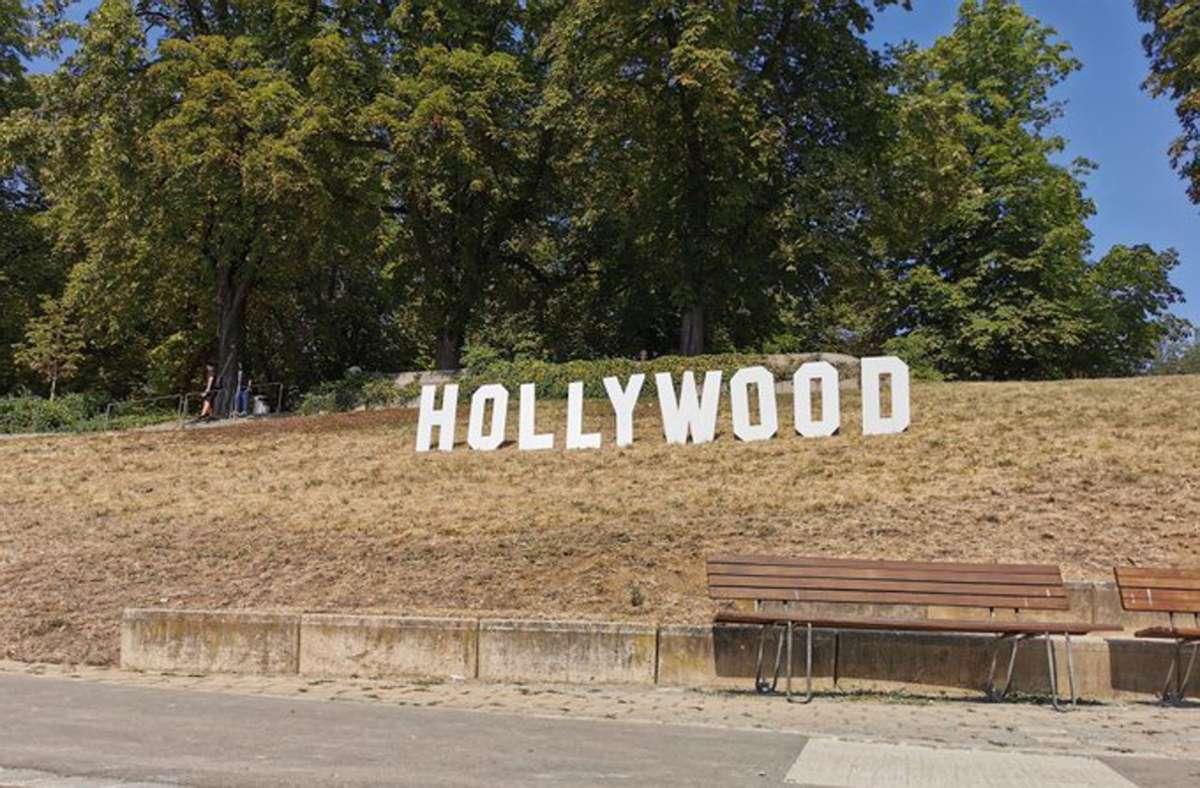 Hollywood im Unteren Schlossgarten? Foto: Constantin Schiller