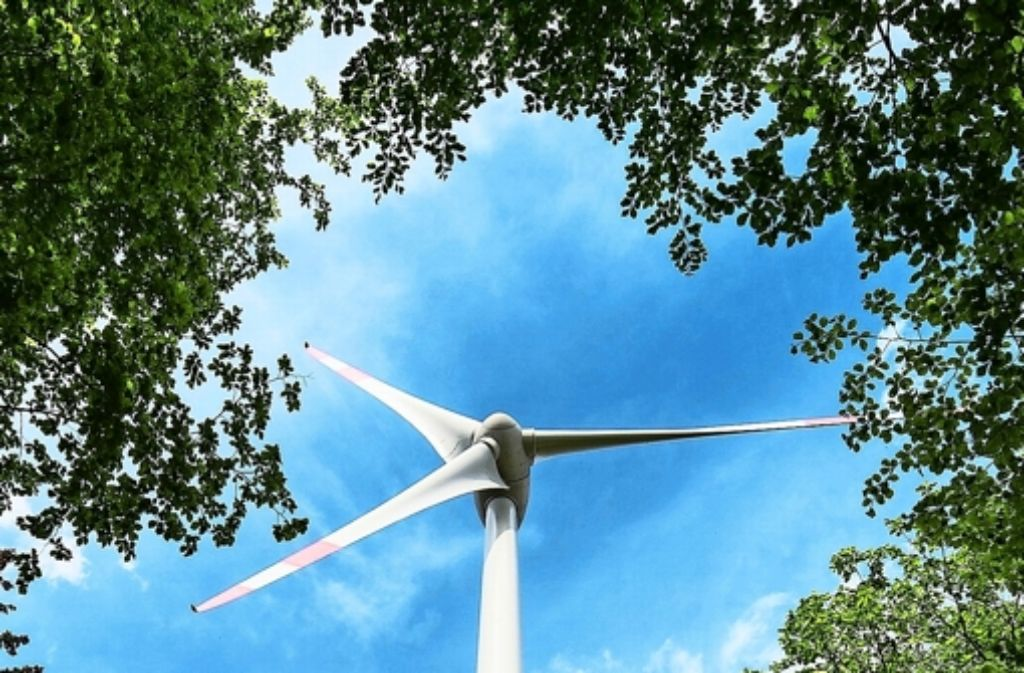 Die Stadtwerke prüfen derzeit, ob sich Windräder am Tauschwald rech Foto: AP