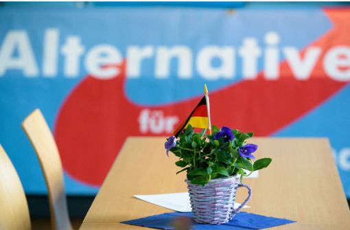 AfD erstmals zweitstärkste Partei