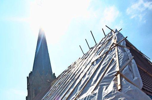 Ein Pilz  frisst Dachstuhl der Johanneskirche