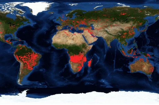 Wo es auf der Welt brennt – und was Feuer anrichten