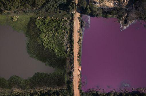 Abwässer färben halbe Lagune lila