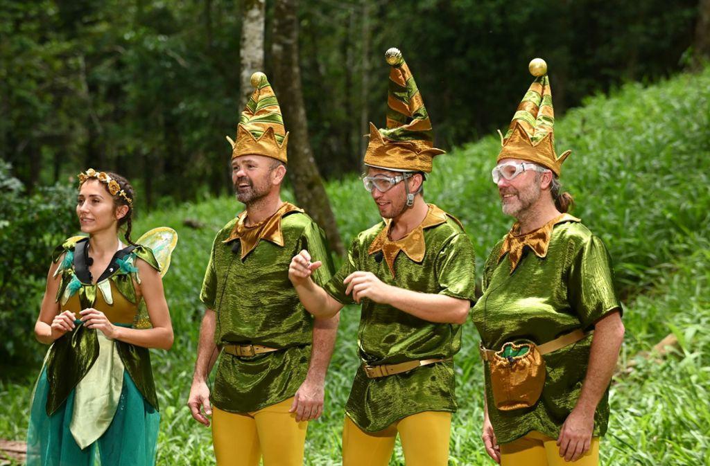 Anastasiya Avilova, Sven Ottke, Raúl Richter und Markus Reinecke mussten zur Dschungelprüfung antreten. Foto: TVNOW/Stefan Menne