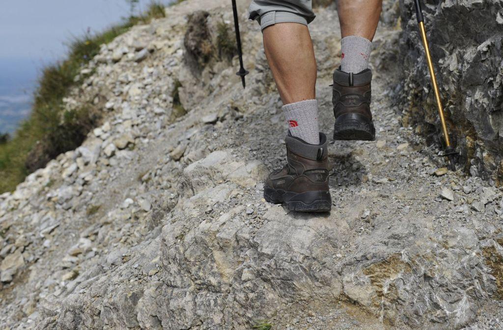 Immer wieder verunglücken Wanderer in den Bergen (Symbolbild). Foto: dpa