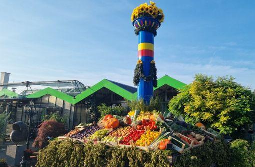 Volksfest-Fan stellt Mini-Fruchtsäule in seiner Gärtnerei auf