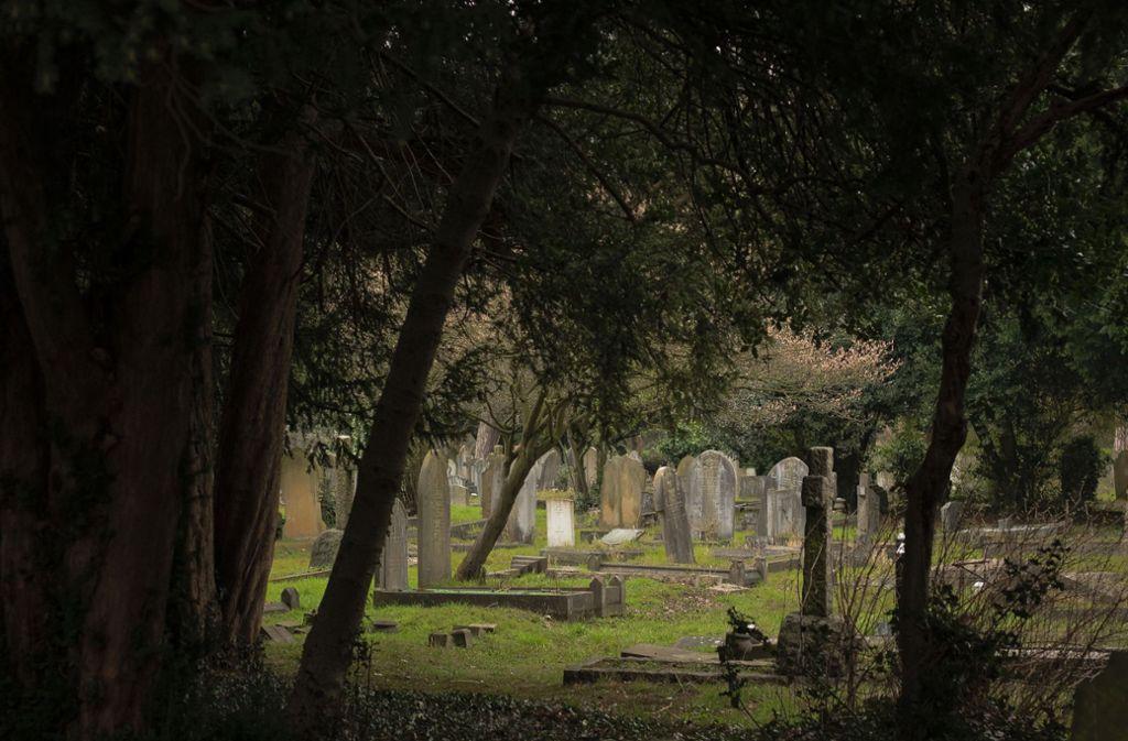 Bob und Corrine Johnson, 88 und 87 Jahre alt, wurden am Dienstag beigesetzt, nachdem sie im Abstand von 33 Stunden gestorben waren. (Symbolbild) Foto: Unsplash/Eddie Howell